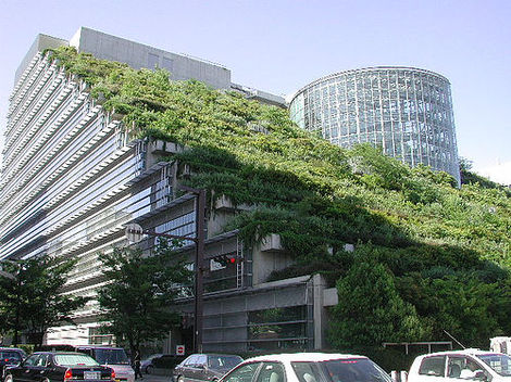 How To Build A Green Roof Urban Plantscapes Llc