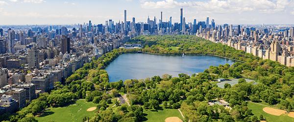 newyork-urbnplantscapes